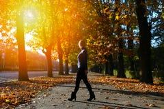 Mujer entre las hojas de otoño Foto de archivo libre de regalías
