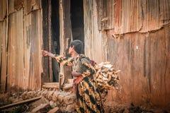 Mujer etíope en el camino con un paquete de leña, Etiopía Foto de archivo