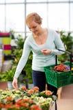 Mujer feliz con la cesta que elige las flores en tienda Imágenes de archivo libres de regalías