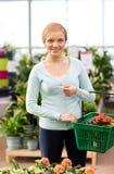 Mujer feliz con la cesta que elige las flores en tienda Imagen de archivo