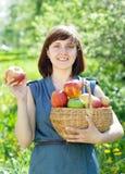 Mujer feliz con la cosecha de la manzana fotografía de archivo