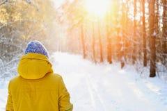 Mujer feliz de la belleza que camina en el parque en invierno Imagen de archivo