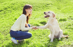 Mujer feliz del dueño con los trenes de perro del labrador retriever Imagenes de archivo