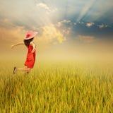 Mujer feliz en campo y puesta del sol del arroz Imagen de archivo libre de regalías