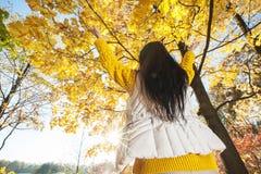 Mujer feliz en parque del otoño Fotografía de archivo libre de regalías