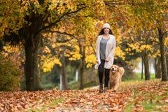Mujer feliz que camina su perro del golden retriever en un parque con caída Foto de archivo libre de regalías