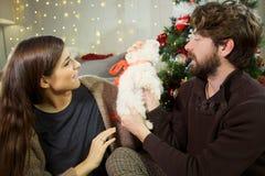 Mujer feliz que da el pequeño perro maltés como regalo de Navidad al novio sorprendido Fotos de archivo libres de regalías