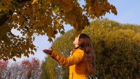 Mujer feliz que goza de las hojas que caen metrajes