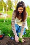 Mujer feliz que planta las flores Foto de archivo