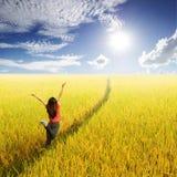 Mujer feliz que salta en campo del arroz y el cielo amarillos de Sun Imagen de archivo libre de regalías