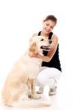 Mujer feliz y su perro hermoso Fotos de archivo