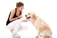 Mujer feliz y su perro hermoso Imagenes de archivo