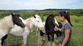 Mujer filipina con los caballos Imagenes de archivo