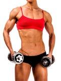 Mujer fuerte con los barbells Imagen de archivo libre de regalías