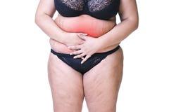 Mujer gorda con el dolor, la endometriosis o la cistitis menstrual, dolor de estómago, cuerpo femenino gordo aislado en el fondo  Fotografía de archivo libre de regalías