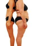 Mujer gorda y fina Imagenes de archivo
