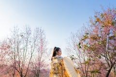 Mujer hermosa asiática que lleva el kimono y la flor de cerezo japoneses tradicionales en la primavera, Japón imágenes de archivo libres de regalías