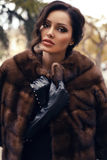 Mujer hermosa con el pelo oscuro en abrigo de pieles y guantes lujosos Fotografía de archivo libre de regalías