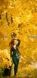 Mujer hermosa con el pelo rojo en parque de la caída Fotografía de archivo