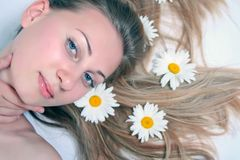 mujer hermosa con la manzanilla Imagenes de archivo
