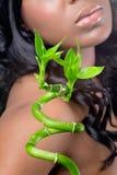 Mujer hermosa con las hojas de bambú, tiro del primer Foto de archivo