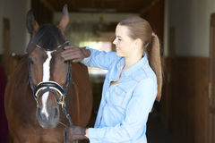 Mujer hermosa con su caballo del deporte Foto de archivo