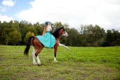 Mujer hermosa con un caballo en el campo Muchacha encendido Foto de archivo