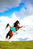 Mujer hermosa con un caballo en el campo Muchacha encendido Imágenes de archivo libres de regalías