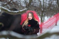 Mujer hermosa con un caballo negro en invierno con una rosa roja en un velo rojo Fotos de archivo