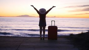 Mujer hermosa con una maleta en la playa soleada almacen de video