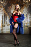Mujer hermosa Curvaceous que presenta en lencería sexy, medias y abrigo de pieles Foto de archivo libre de regalías