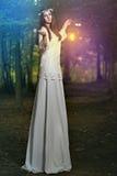 Mujer hermosa de hadas en bosque mágico Foto de archivo