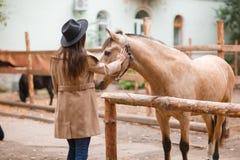 Mujer hermosa de la elegancia que frota ligeramente un caballo al aire libre Fotografía de archivo libre de regalías