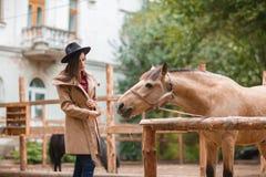 Mujer hermosa de la elegancia que frota ligeramente un caballo al aire libre Imagen de archivo
