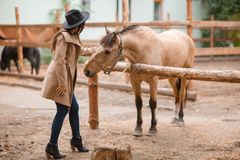 Mujer hermosa de la elegancia que frota ligeramente un caballo al aire libre Foto de archivo libre de regalías