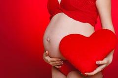 Mujer hermosa embarazada que sostiene la almohada roja del corazón en sus manos aisladas en fondo rojo Fotografía de archivo
