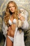 Mujer hermosa en abrigo de pieles con el perro de la chihuahua. Imagen de archivo libre de regalías