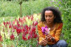 Mujer hermosa en jardín de flor Fotos de archivo