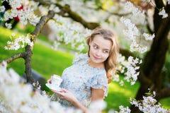 Mujer hermosa en jardín de la cereza con la taza de té Fotos de archivo libres de regalías
