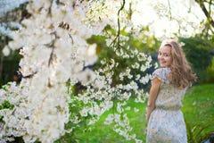Mujer hermosa en jardín floreciente de la cereza Fotografía de archivo