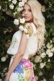 Mujer hermosa en parque cerca de las rosas florecientes de Bush Foto de archivo libre de regalías