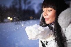 Mujer hermosa en parque del invierno imagen de archivo