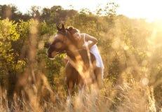 Mujer hermosa en un caballo Fotos de archivo
