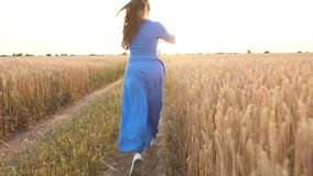 Mujer hermosa en un vestido azul y funcionamientos del sombrero a través de un campo de trigo en la puesta del sol Concepto de la almacen de video
