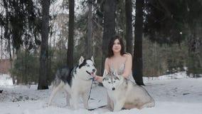 Mujer hermosa en vestido y husky siberiano almacen de video