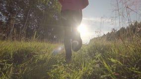 Mujer hermosa funcionada con lejos en campo de trigo La mujer corre en los rayos del sol almacen de video
