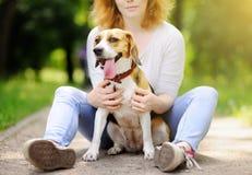 Mujer hermosa joven con el perro del beagle imagenes de archivo