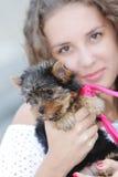 Mujer hermosa joven con el terrier de yorkshire Imagen de archivo