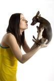 Mujer hermosa joven con poco perro del terrier de juguete Foto de archivo libre de regalías