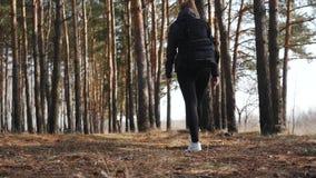Mujer hermosa joven con una mochila que camina en el tiro del carro del resbalador del bosque metrajes